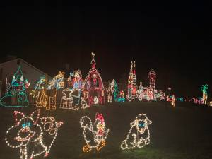 Christmas Lights in Skagit County Biz Point Road Anacortes animals
