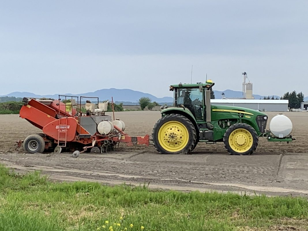 skagit agriculture planting-potatoes-near-Conway