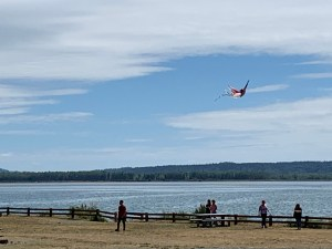 play in water skagit county Bay-View-State-Park-kite