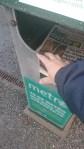 Ska jag läsa tidningen?