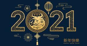 Ето какво ще ни донесе годината на Белия метален вол през 2021