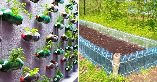 Вече цяла година не съм хвърляла пластмасови бутилки. Хем природата чиста хем градината ми възкръсна!