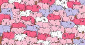Само 1 от 100 човека могат да открият различният слон за по-малко от минута /СНИМКА/