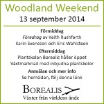 Woodland Weekend Borealis 13 september