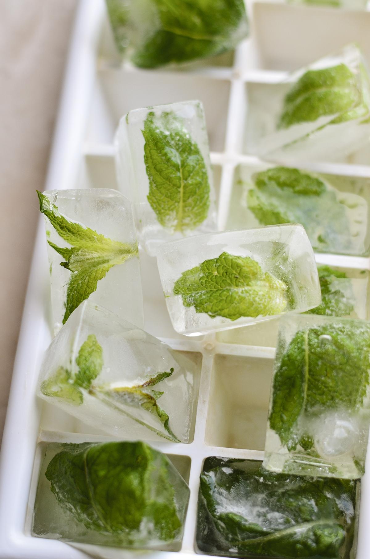 ledukai su mėtomis skanios dienos (6)