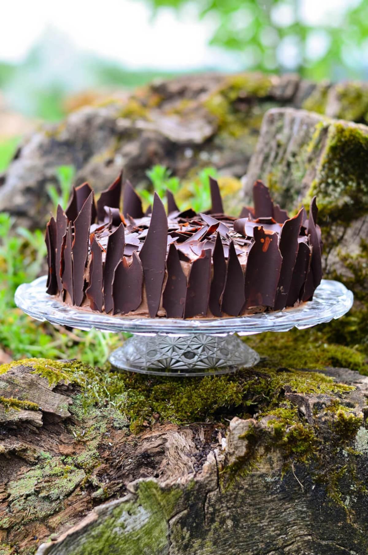 velnio tortas skanios dienos (2)