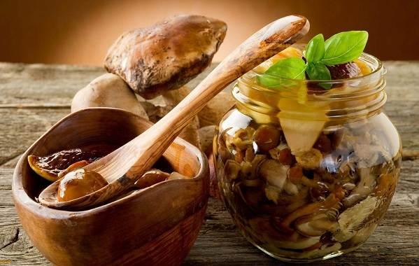 Грибы-Полезные-свойства-грибов-1