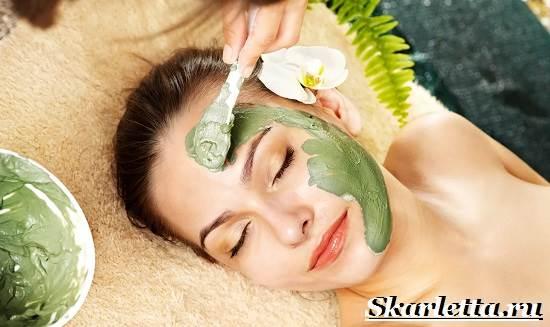Косметическая-глина-Свойства-виды-и-применение-косметической-глины-1