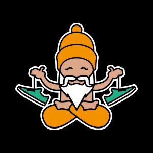 skateshoeguru logo