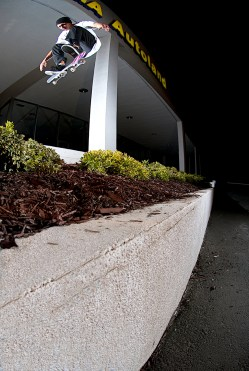 Zack Wallin-fakie flip_hayward