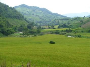 vyer längs Mae Kok River