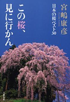 宮嶋康彦・桜
