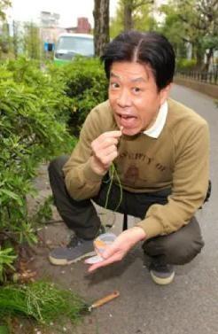 岡本信人道草を食う