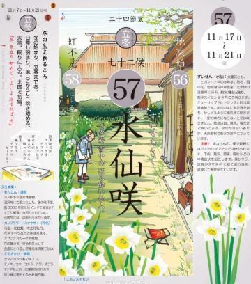 水仙咲七十二候