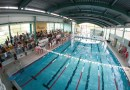 Basen Camena gospodarzem pływackich mistrzostw