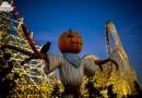 Halloweenowe bilety za pół ceny!