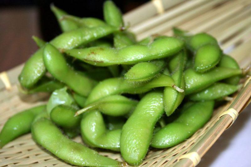 Alimentos do Japão, derivados de soja - feijao edamame japao 4