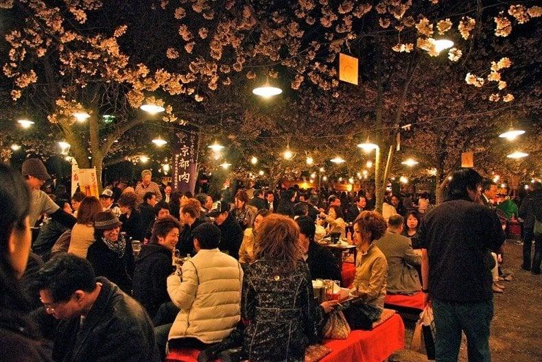 Hanami (cherry blossom viewing)