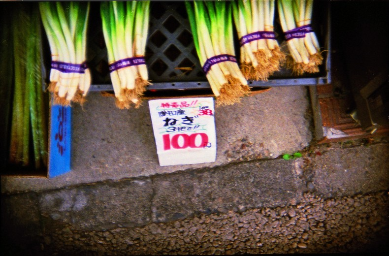 Ingredientes usado na comida japonesa - Parte 1 - negi verduras 4