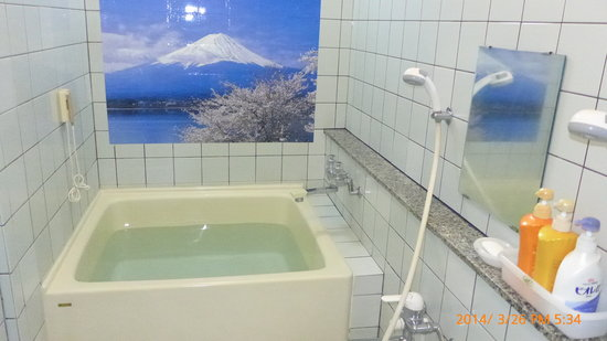 Bathroom in japan - the superiority of the japanese toilet