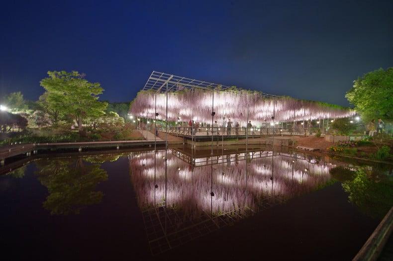 Ashikaga – curiosidades e atrações