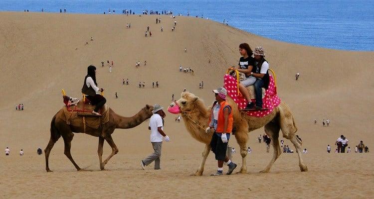 Sa mạc ở Nhật Bản - cồn cát của tottori sakyu