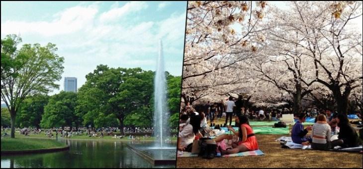 Parque Yoyogi - O maior parque de Tokyo