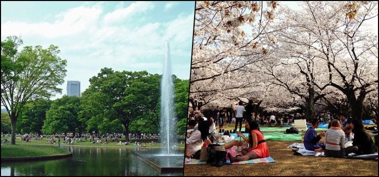 Parque Yoyogi: el parque más grande de Tokio