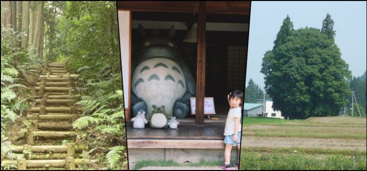 Vivendo o mundo real de Totoro no Japão
