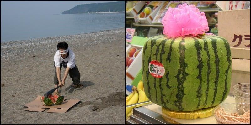 Melancia quadrada do Japão - Curiosidades e sucesso