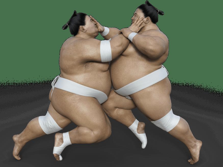 सूमो - सेनानियों और जिज्ञासाओं का जीवन
