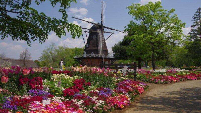 andersen park - Conhecendo o mundo em lugares estrangeiros do Japão