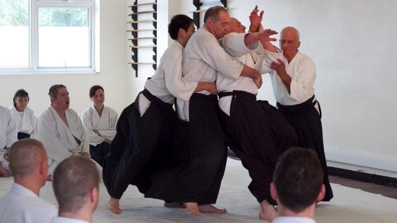 As 10 Artes marciais japonesas + Lista AIKIDO [合気道] - O CAMINHO DA HARMONIA