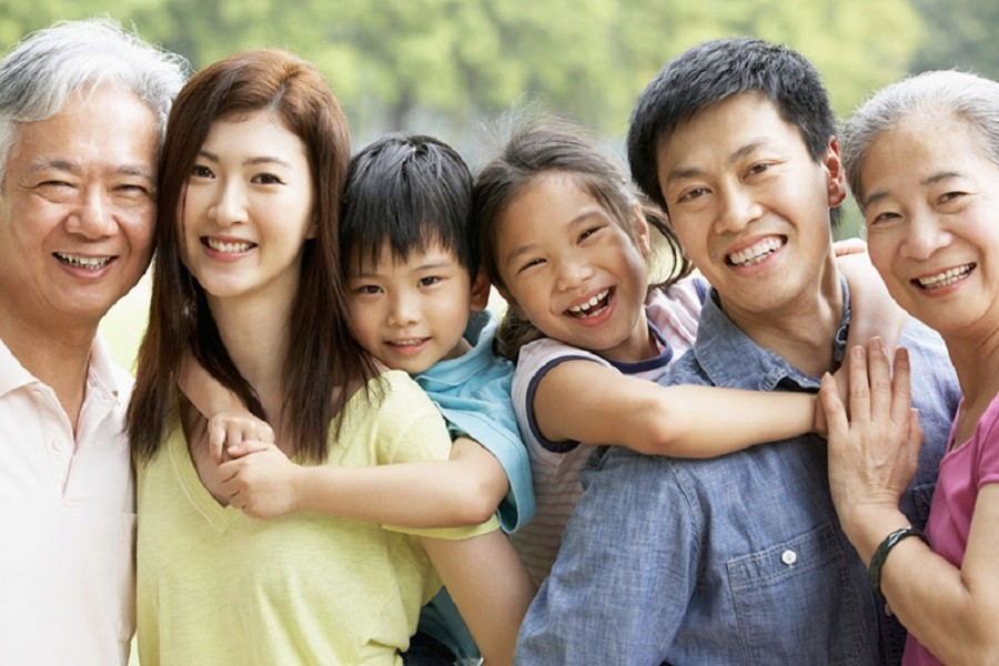 Auxílios e benefícios sociais do japão - image 3