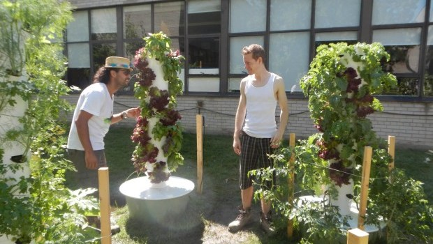 Skyline Farms: A journey of student entrepreneurs