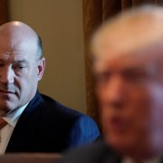 Trump holds cabinet meeting on proposed steel tariffs