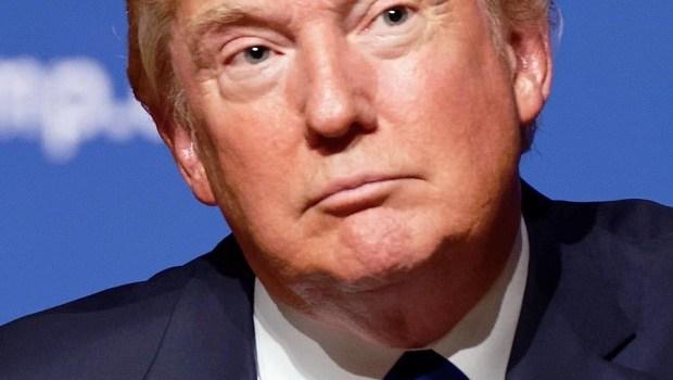 Trump's Twitter empire