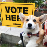 Toronto Municipal Elections: Social Media Wrap-up