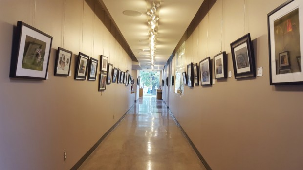 Nature's Sanctuary photography exhibition