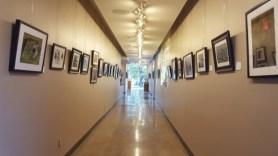 Nature's Sanctuary exhibition.