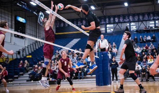Humber Hawks volleyball teams spike Conestoga Condors