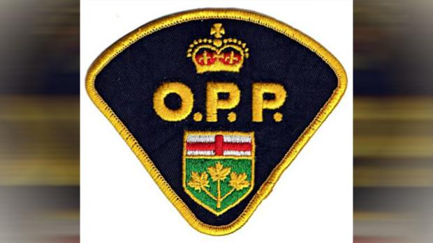 Taverner turns down OPP position