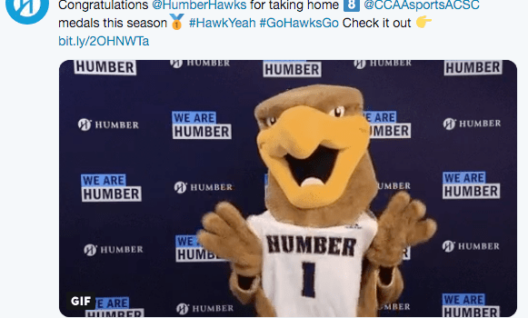 Humber Hawks: Medalling phenoms