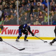 Women's hockey league gains new fans on Twitch