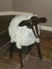 Iron chain sheep in Sonara