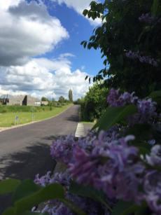 Kig op mod rækkehuse i Skelbæklund