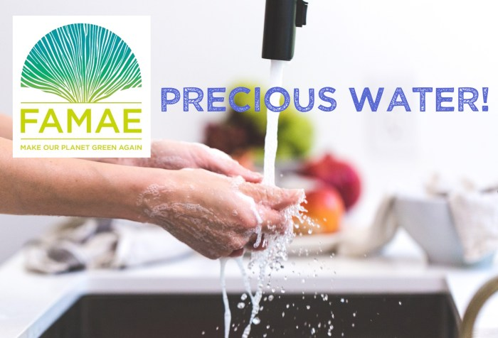FAMAE Precious Water Challenge