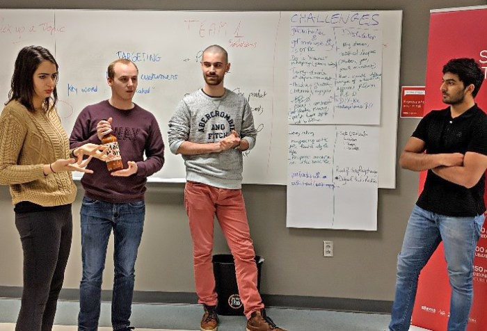 SKEMA Ventures Brainstorming Workshop in Raleigh