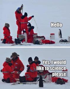 penguin meme yes i would like to science please
