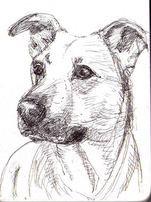 Line Drawing Portrait Artists : Best drawing composition images